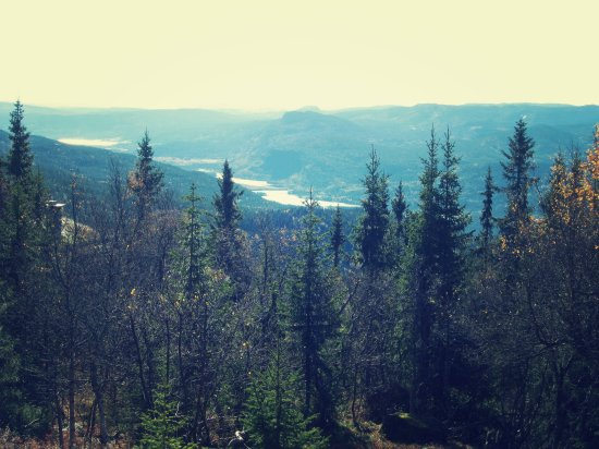 hytta utsikt